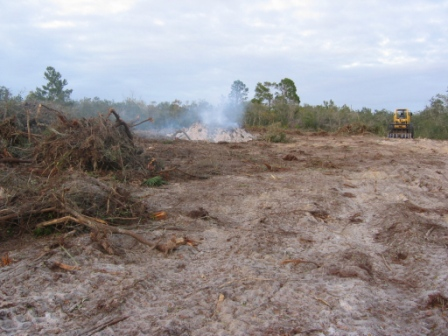 tractor clearing lot and burn pile
